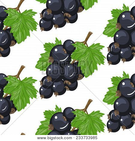 Vector Black Currant Seamless Pattern. Background Design For Tea, Ice Cream, Natural Cosmetics, Cand