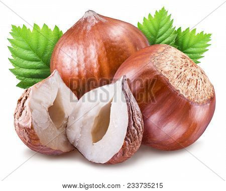 Hazelnuts, kernel of filbert and green leaves. Clipping path. Organic food.