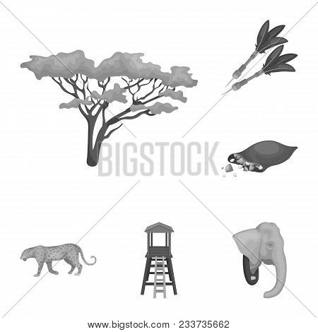 African Safari Monochrome Icons In Set Collection For Design. Trophies And Equipment For Safari Vect