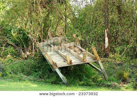 Dock In Trees