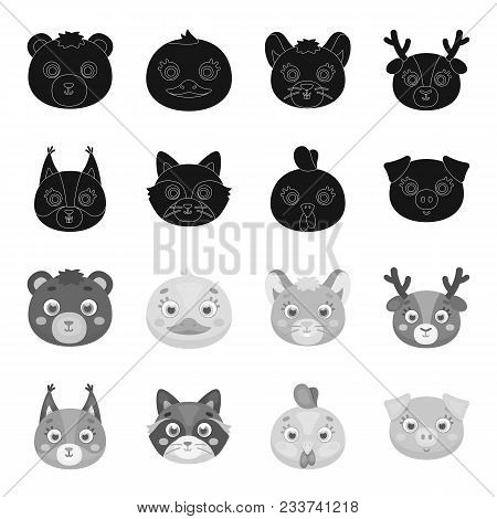 Protein, Raccoon, Chicken, Pig. Animal Muzzle Set Collection Icons In Black, Monochrome Style Vector
