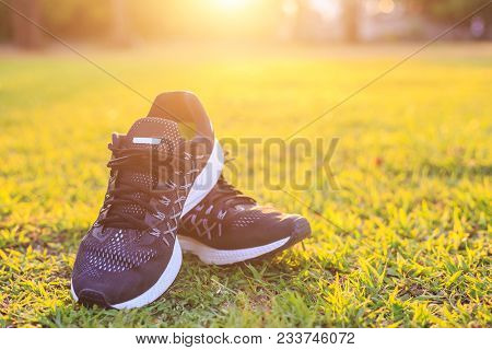 Close Up New Pairs Of Black Running Shoes / Sneaker Shoes On Green Grass Field In The Park At Sunset