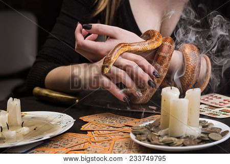 The snake in the hands of the witch and the fading candles on the table after the divination poster