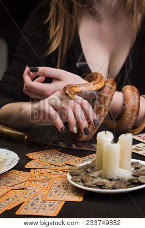 A Snake In The Smoke Of Dying Candles In Front Of A Table With Fortunetelling Cards