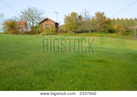 Vineyard Cabin