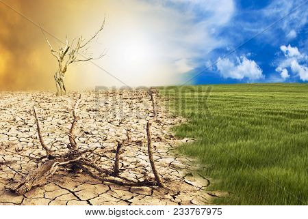 Conceptual Scene: Metamorphosis Of Our Planet, Transition From A Green Environment To The Hostile An