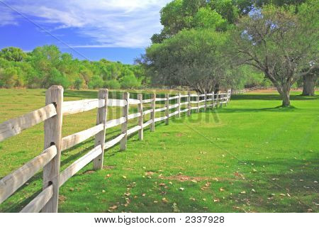 White Fence Green Grass