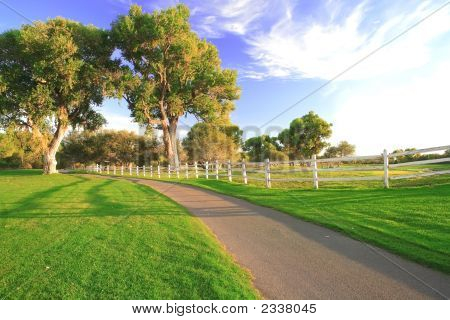 White Fence And Path
