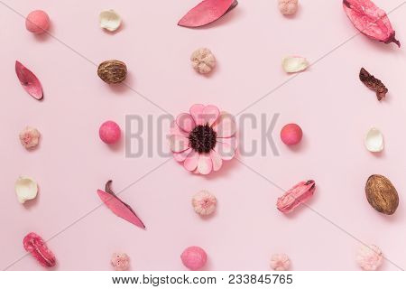 Creative pattern made of dried flowers, leaves and fruitage on pastel pink background summer spring minimal concepts. poster