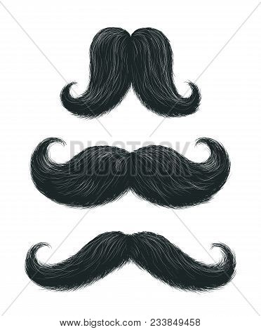 Vector Hand Drawn Stylish Black Mustaches Set With Some Gray Hair. Comic Funny Shaped Moustaches Col