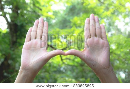 Close Up Of Hands Making Frame Gesture. Close Up Of Woman Hands Making Frame Gesture.