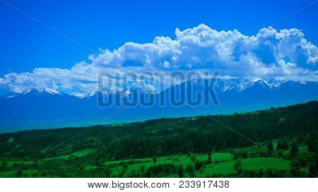 Photo Depicting A Beautiful Colorful Amazing Mountain Meadow Paradise Landscape, Summertime. Europea