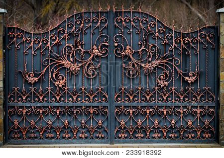 magnificent wrought-iron gates, ornamental forging, forged elements close-up. poster