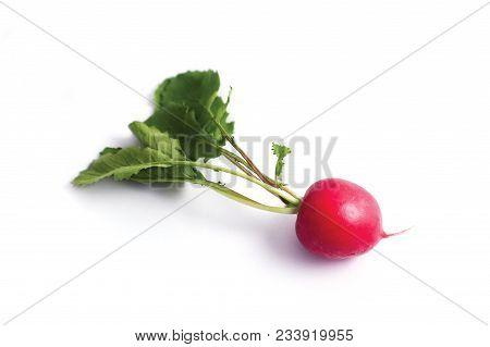 One Colorful Delicious Radish On White Background. Photo Depicting Fresh Radish With Green Leaves Is