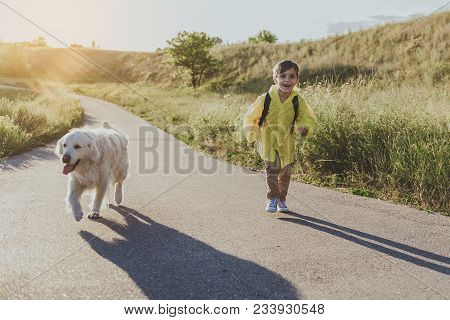 Young Content Boy With Rucksack Running Along Sunlit Rode With His Dog. Copy Space In Right Side. Fu