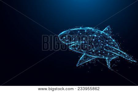 Abstract Shark Form Lines And Triangles, Point Connecting Network On Blue Background. Illustration V