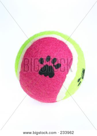 Dog Paw Ball