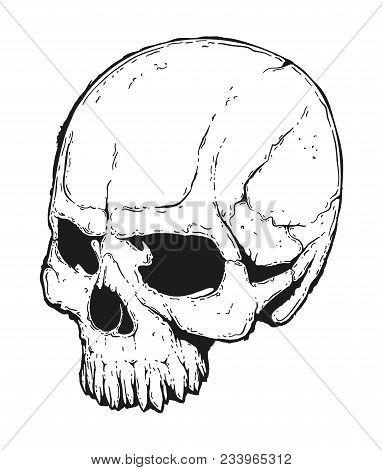 Evil Skull Hand Drawn Illustration. Drawing Of Half Turned Jawless Dead Head.