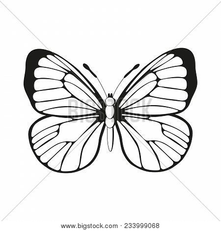 Silhouette Butterfly Black And White Pattern Vector, Wings Icon Illustration. Easy To Scale To Any S
