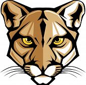 Graphic Vector Mascot Image of a Mountain Lion Head poster