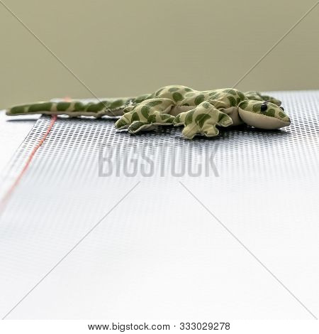 Square Frame Stuffed Toy Lizard With Green Spots Mimicking Camouflage On Top Of A Table