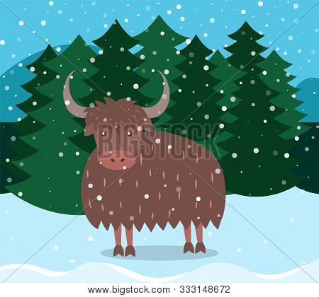 Pine Forest Vector, Winter Landscape In Woods. Bull With Horns Outdoors. Animal Standing By Firtree.
