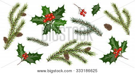 Set With Fir Tree Branches And Holly Berries, Isolated On White Background. Design Elements For Chri
