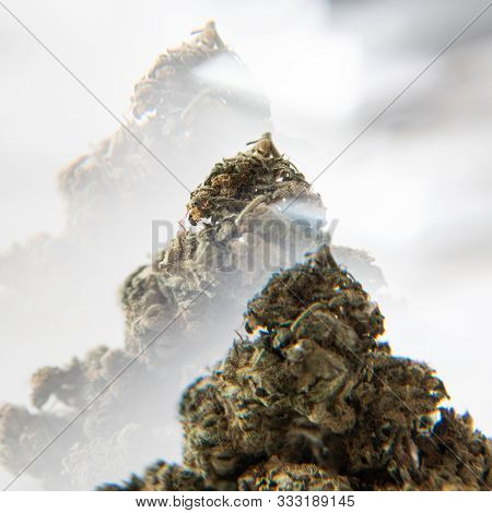 Big Cannabis Medical Buds In Mans Hands Close-up. Medical Marijuana In Our Days.