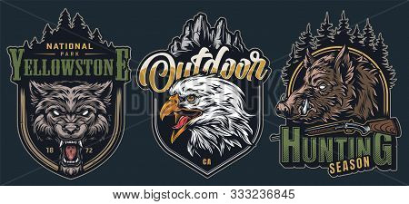 Colorful Wildlife Vintage Labels With Aggressive Ferocious Wolf Wild Boar And Eagle Heads On Green B