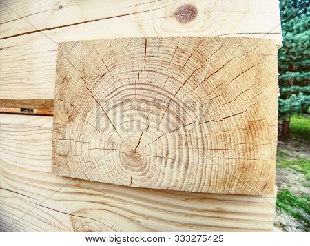Corner Of Blockhouse From Logs. Connection Of Logs. Wood Annual Rings. Green Building Concept. Rope