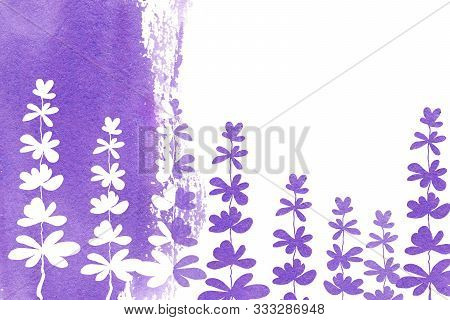 Lilac, White And Purple Lavender Flowers On A Watercolor Horizontal Background, With Place For Text.