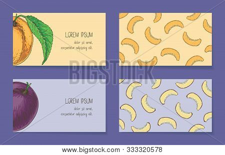 Fruit Business Cards Template Collection On A Violet Background. Apricot And Plum. Front Side And Ba