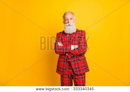 Portrait Of His He Nice Attractive Well-dressed Content Imposing Gray-haired Man Wearing Checkered J