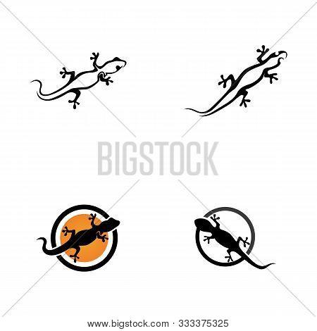 Lizard Symbol Icon Vector