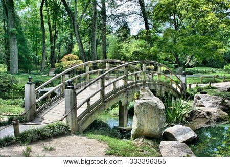 Forest River Bridge Landscape. River Bridge In Forest. Forrest River Bridge View. Forest River Bridg