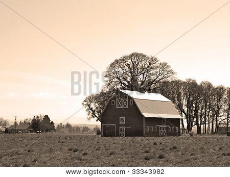 Vintage Barn In Field Sepia Tone