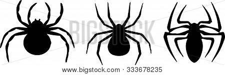 Spider Icon On White Background Spidery, Stencil, Symbol, Tarantula