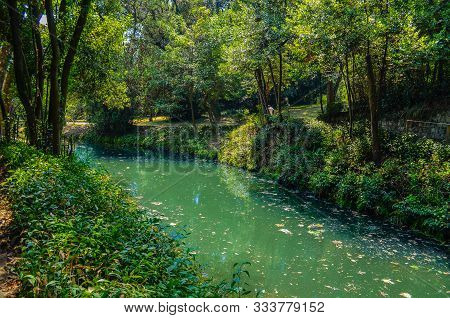 Small River In The Deep Green Forest