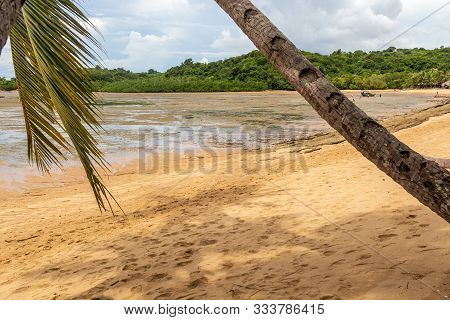 Beach With Palm Trees At Ebb On Nosy Be Island In Madagascar, Nosy Be, Africa