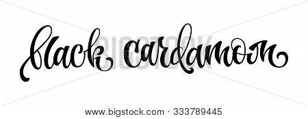 Black Cardamom - Hand Drawn Spice Label. Isolated Calligraphy Scrypt Stile Word. Vector Lettering De