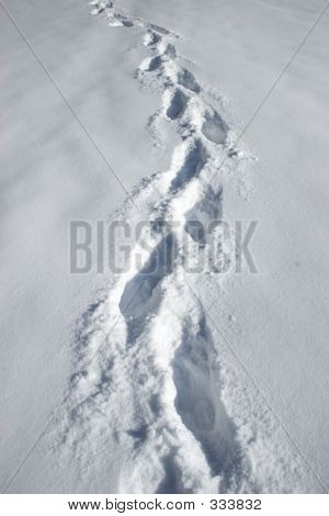on a winter day, footprints are left in the snow by a single hiker. poster