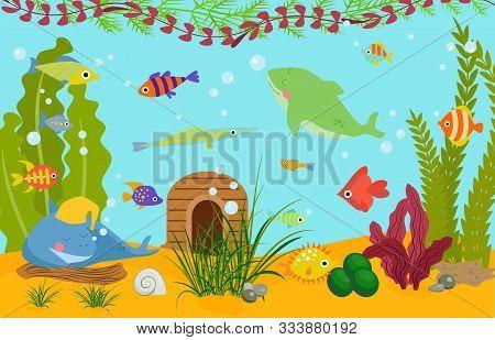 Tropical Fishes Underwater World Wildlife Sea, Ocean, Marine, Aquarium Vector Illustration. Colorful