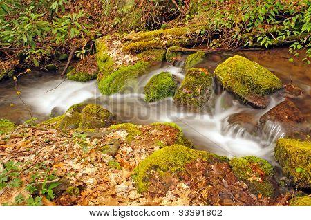 Appalachian Stream In The Spring