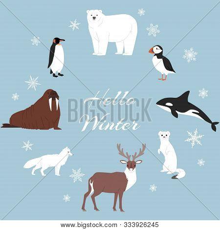 Arctic And Antarctic Animals Vector Set. Winter, Nature And Travel Illustration. Penguin, Polar Bear