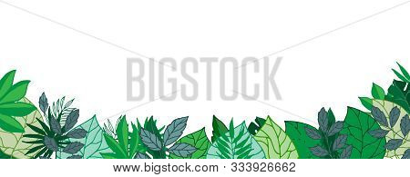Green Leaves Gorizontal Banner Or Poster With Blanc Space, Vector Illustration. Greenery Foliage Bac