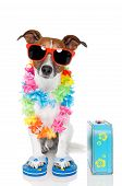 Tourist Dog With Hawaiian  Lei And A blue Bag poster