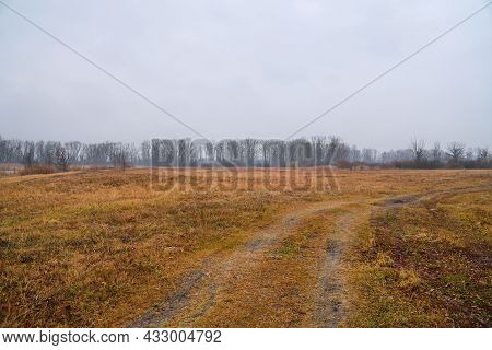 A Country Road Through A Field With Dry Grass To The Forest In Late Autumn In Cloudy Weather. Landsc