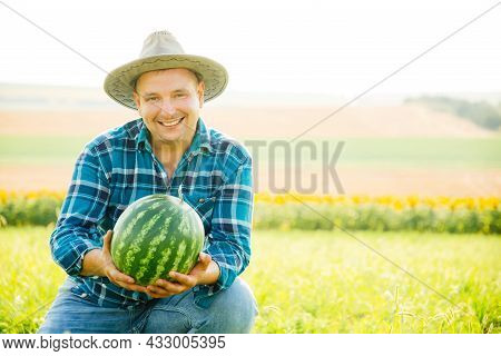 The Portrait Of A Smiling Farmer Holds A Watermelon In His Hand. The Man Looking At The Camera Is We