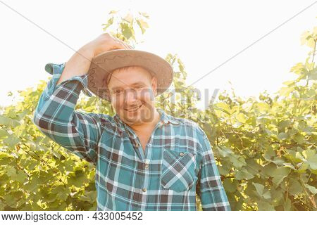 Handsome Caucasian Farmer Man Looks At The Camera And Smiles Handsome, Winemaker Is In The Vineyard