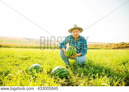 Farmer Holds A Watermelon In His Hand, Looks At The Camera The Man Is Happy. Caucasian Male With Hat